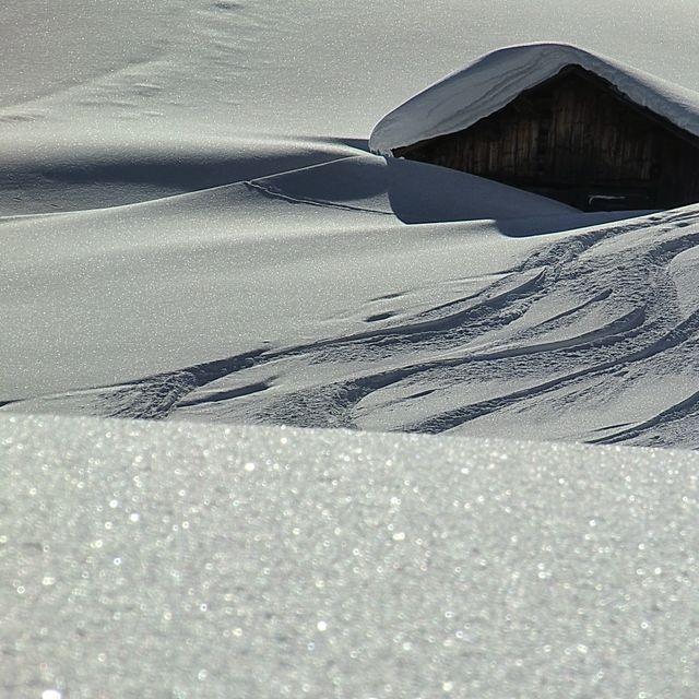 Snow Experience - 7