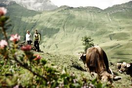 Urlaub in den Bergen von Warth am Arlberg steht für ein intensives Naturerlebnis.