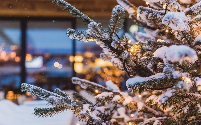 Winter-Festival Woche vom 26.1. - 2.2.2020 1/8