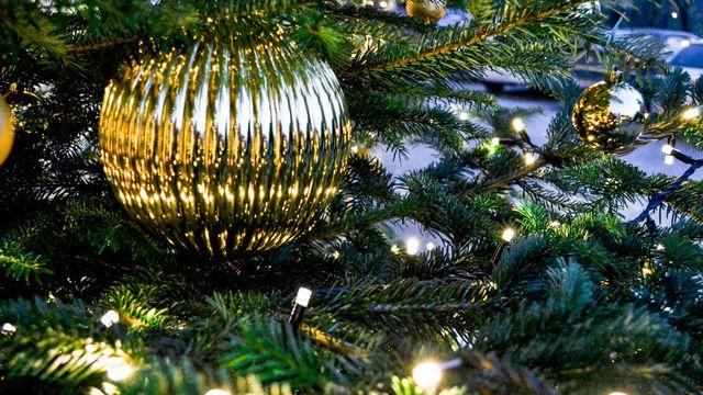 Weihnachtszauber im Waldhof 2019