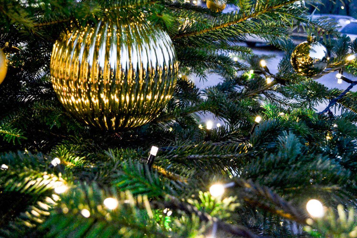 Weihnachtszauber im Waldhof 2020