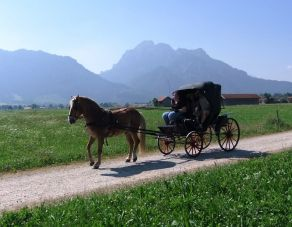 Romantic Horse-Drawn Carriage