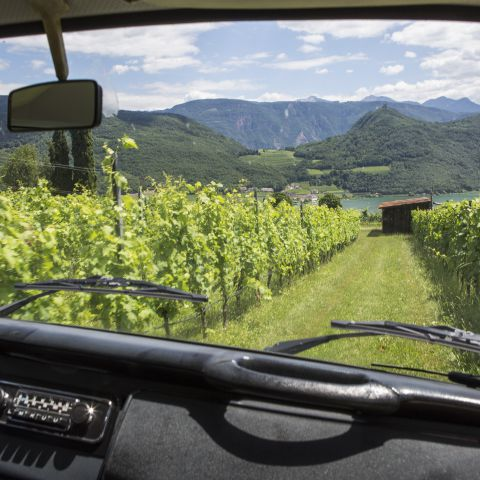 2nd Vinum Classic South Tyrol from October 17-21, 2018