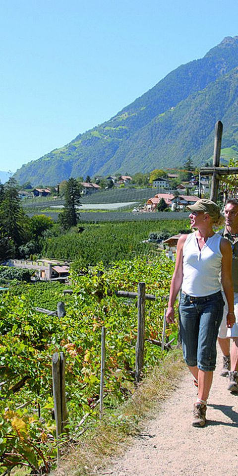 Südtirol erfahren