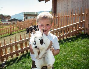 Easter bunny week 7=8