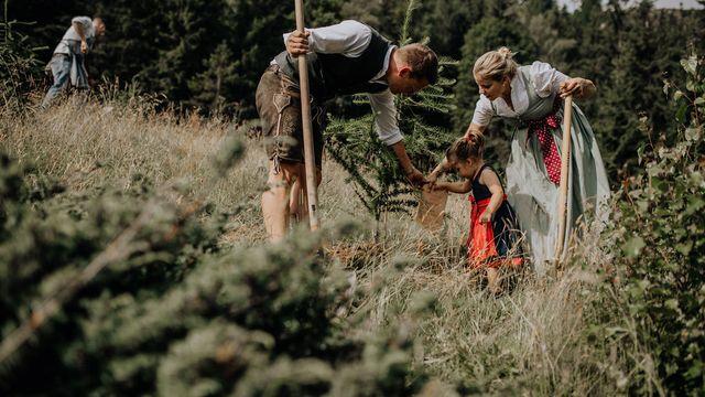 Baumpatenschaft waldLIEBE