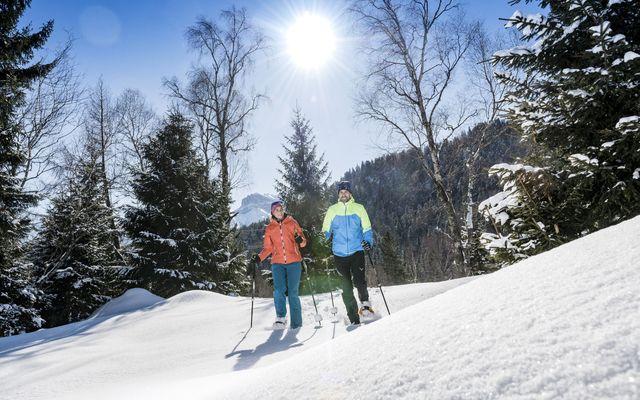 Schneeschuhwandern & Wellness - 4 Nächte