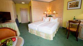 Doppelzimmer Napoleonsfels 3/3 - PFALZBLICK WALD SPA RESORT