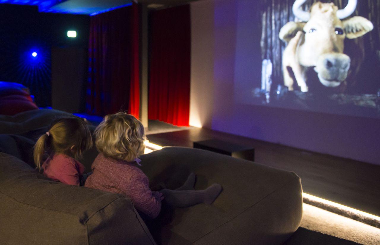 Hauseigenes Kino