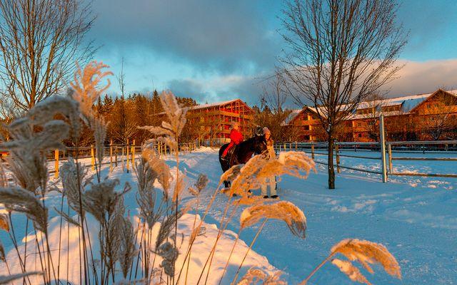 ULRICHSHOF_Außenansicht Winter.jpg