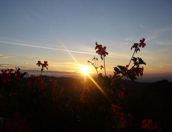 Biohotel Arche Urlaub in Kärnten Sonnenuntergang