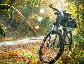 Biohotel Pausnhof Mountainbike