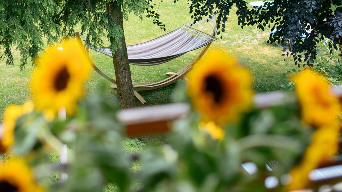 Falkenhof Sommerzeit - 3 Übernachtungen