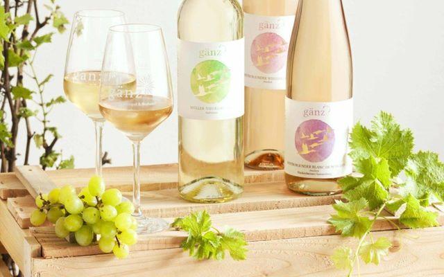 Weingut & Biohotel Gänz: eigener Wein