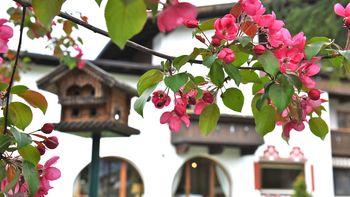 Biohotel Schweitzer Außenansicht Frühling
