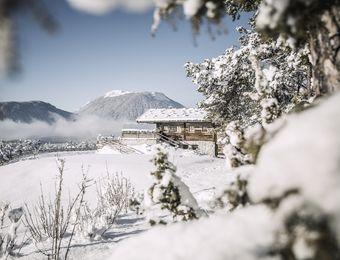 Top Angebot: 3 Neujahrs-Tage - Biohotel Schweitzer