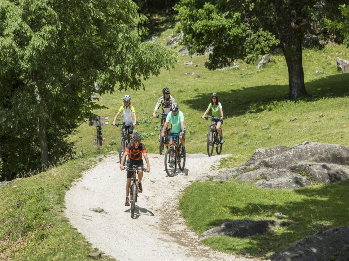 """Giro in bicicletta sulla """"vecia ferovia"""""""
