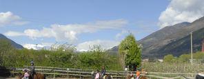 Lezione di equitazione per principianti