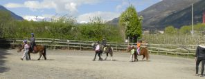 Riding lessons for beginners
