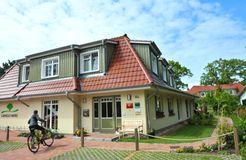 Ginkgo Mare, Ostseebad Prerow, Meclenburgo-Pomerania Occidentale, Germania (11/20)