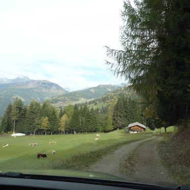 Access road, Moaralmhütte, Dölsach, Osttirol, Tyrol, Austria