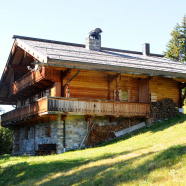 , Brandstatt Alm in Finkenberg, Tirol, Tyrol, Austria