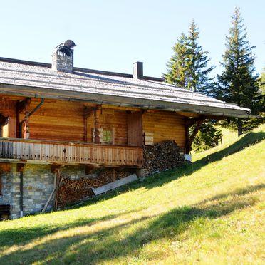 Sommer, Brandstatt Alm in Finkenberg, Tirol, Tirol, Österreich