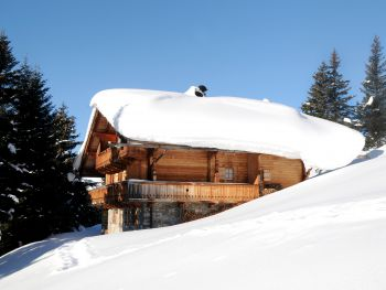 Brandstatt Alm - Tirol - Österreich