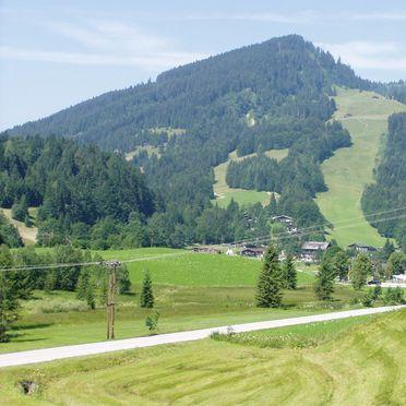 Oberholzerhütte, Aussicht