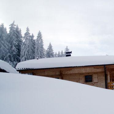 Seitenansicht1, Kogelalm, Hainzenberg, Tirol, Tirol, Österreich