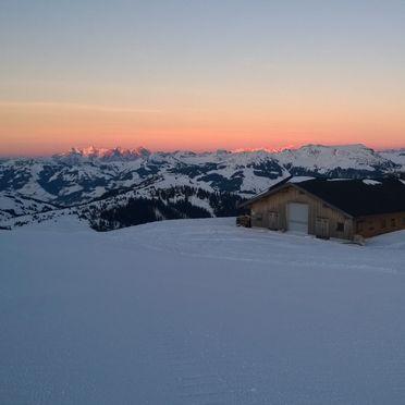 , Latschenalm in Jochberg, Tirol, Tyrol, Austria
