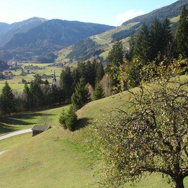 Aussicht, Plenkenhof, Neukirchen, Salzburg, Salzburg, Österreich