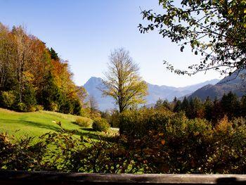 Kuschelhütte - Oberösterreich - Österreich