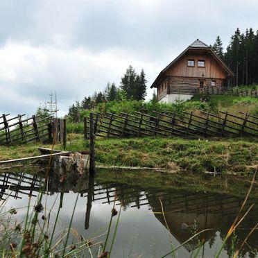 Kuhgrabenhütte, Teich
