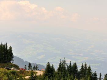 Almrausch-Feriendorf Koralpe - Carinthia  - Austria