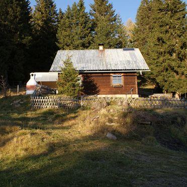 Summer, Zirbenwaldhütte, Mühlen, Steiermark, Styria , Austria