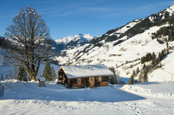 Winter, Hungarhub Hütte, Großarl, Salzburg, Salzburg, Austria