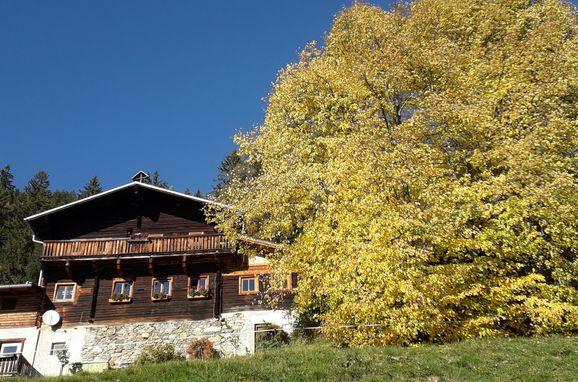 Herbst, Grasreithütte, Großarl, Salzburg, Salzburg, Österreich
