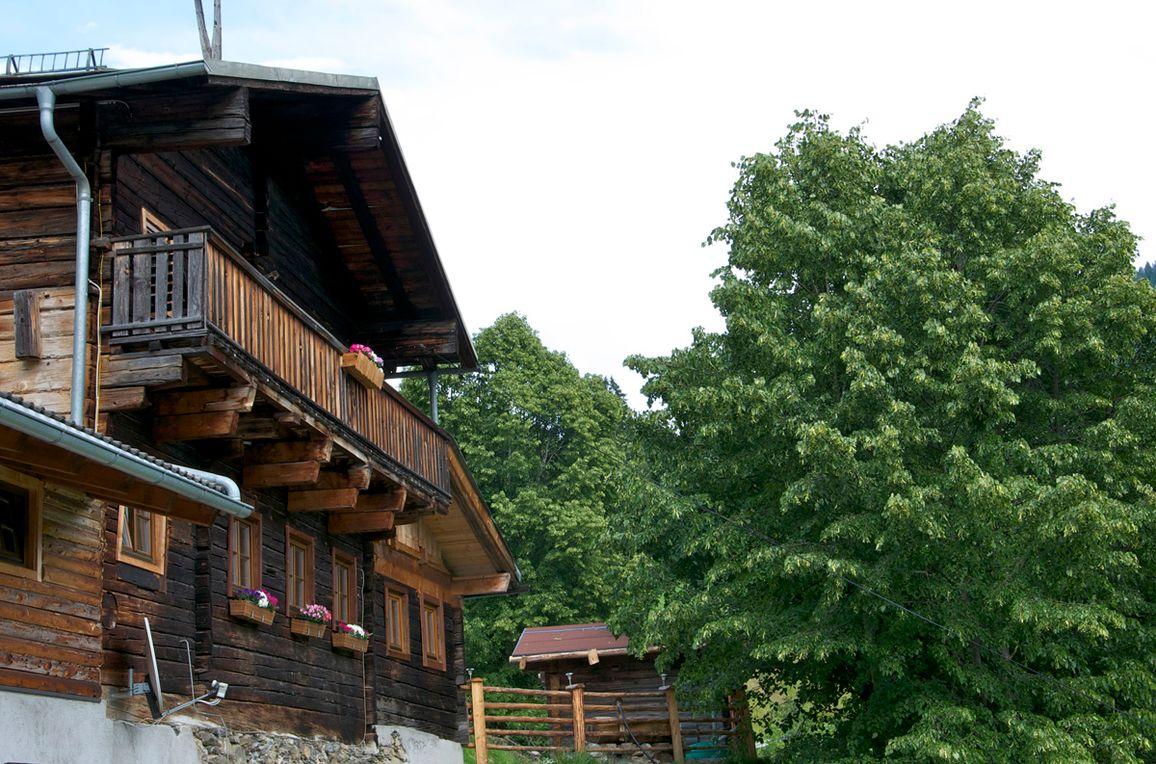 Grasreithütte, Sommer