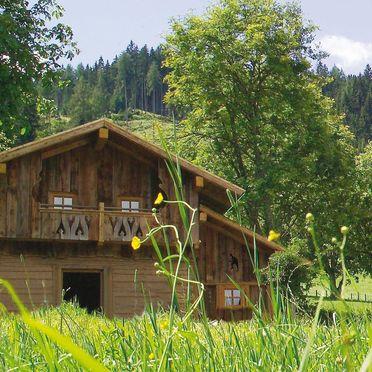 Sommer, Gschwandtner Hüttn, Haus, Steiermark, Steiermark, Österreich