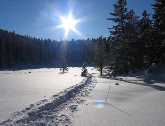 Top Angebot: WWW - Winter Wander Wochen   - Biohotel Stillebach