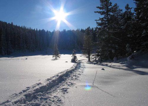 Biohotel Stillebach Hotel Angebot Winter Wander Woche - Biohotel Stillebach