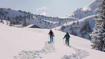 Winterwandern_Schneeschuhwandern