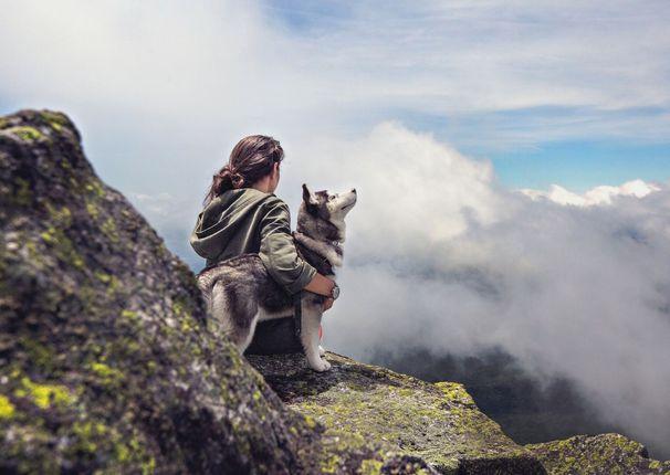 Auf den Hund gekommen - Aktivurlaub mit Hund