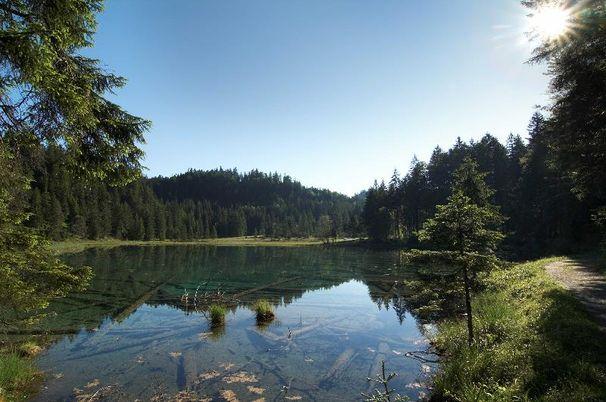 Nature watch - Altweibersommer im Naturpark Tiroler Lech