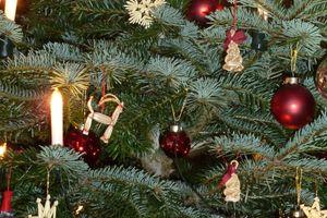 Pre-Christmas Wellness