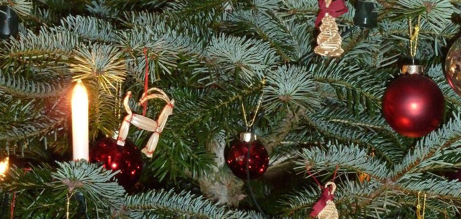 Pre-Christmas Wellness 1/1