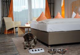 """Comfort Double Room """"Bugatti"""" 1/6"""