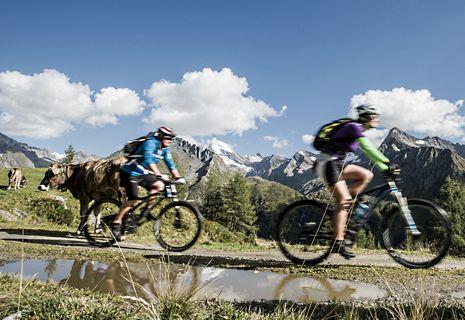 Special Bike Weeks | 17.05. - 04.07.2015 & 04.10. - 17.10.2015