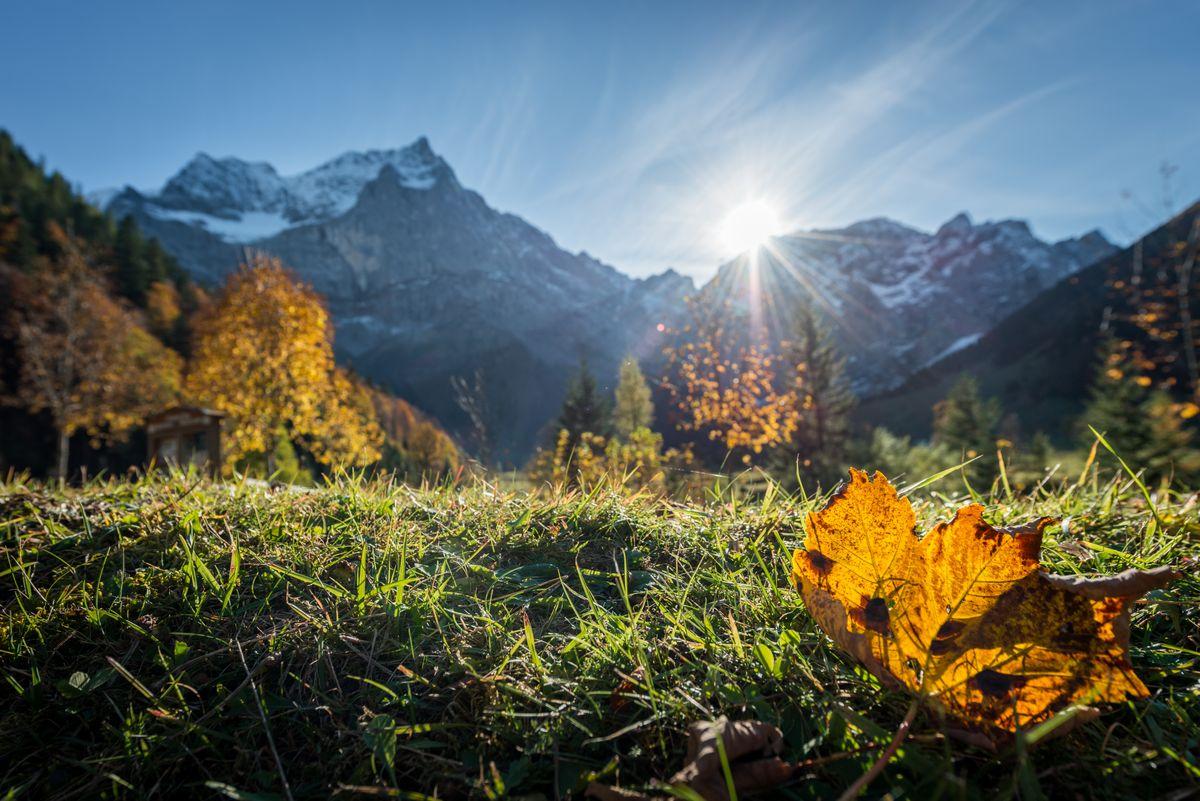 Weekend Special Herbst